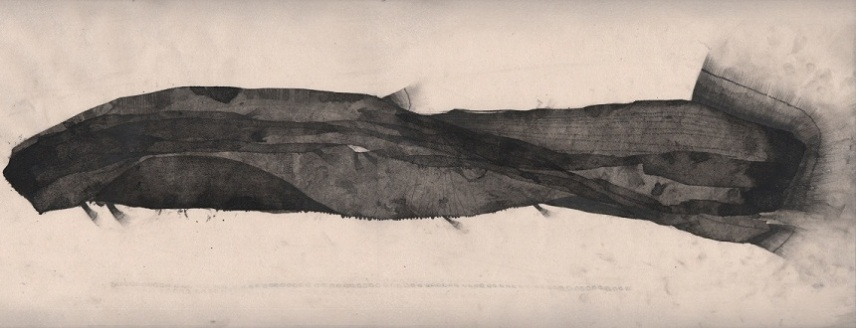 The Icelandic whale, 2012